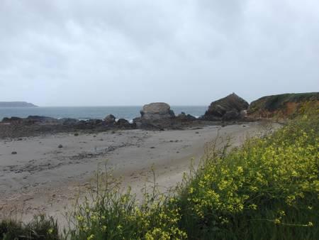 plage-de-pen-hat-camaret-sur-mer-brittany beach