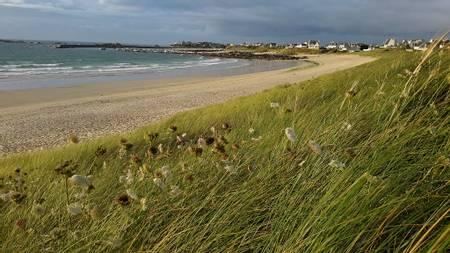 plage-de-porsmeur-plouescat beach