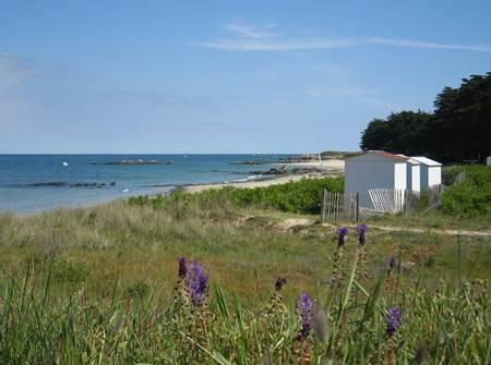 plage-des-sapins-ile-d'yeu beach