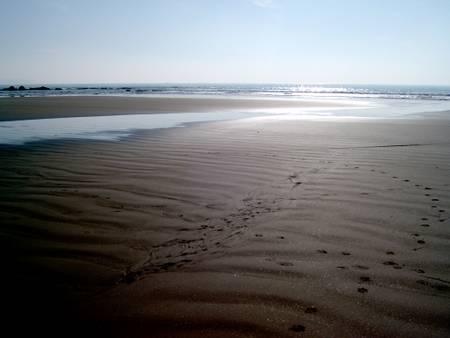 plage-du-veryac'h-camaret-sur-mer-brittany beach