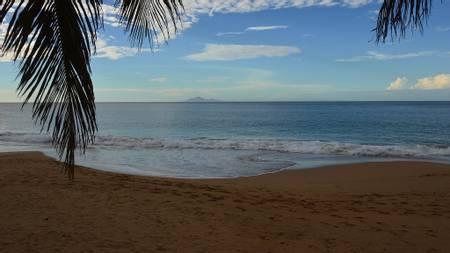 plage-sainte-rose-basse-terre beach