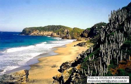praia-brava-cabo-frio-rio-de-janeiro beach