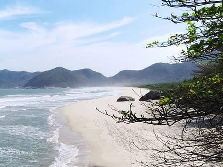 praia-de-grumari-rio-de-janeiro-state-of-rio-de-janeiro beach