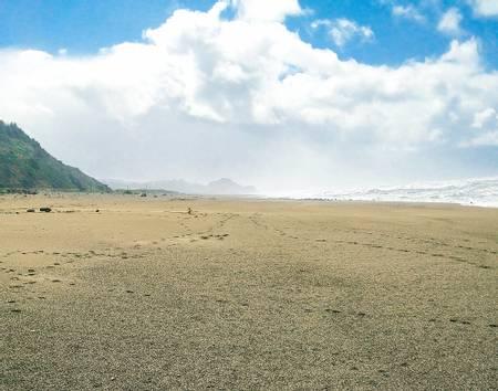 redwood-creek-beach-orick-california beach