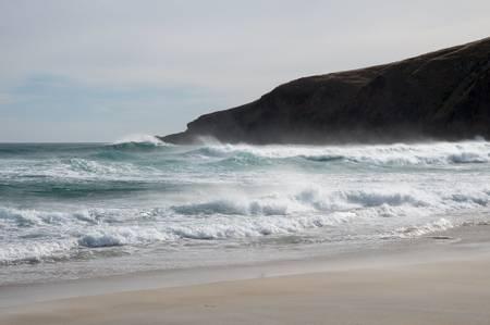 sandfly-bay-dunedin beach
