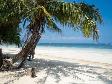 sairee-beach-koh-tao beach
