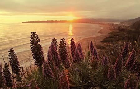 stinson-beach-stinson-beach-california beach